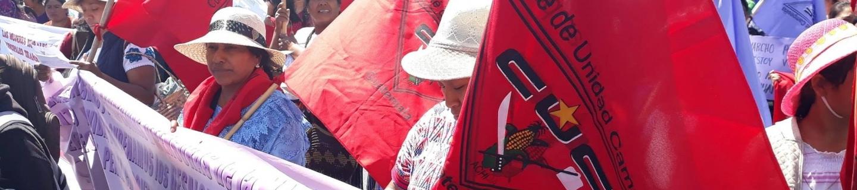 Foto: Comité de Unidad Campesina CUC